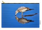 Juvenile Ring-billed Gull  Carry-all Pouch