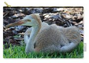 Juvenile Sandhill Crane At Rest Carry-all Pouch
