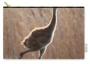 Juvenile Sandhill In The Marsh Carry-all Pouch