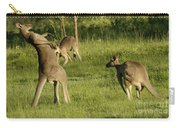 Kangaroo Ready To Box Carry-all Pouch