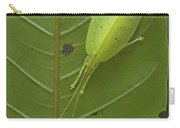 Katydid Muller Range Papua New Guinea Carry-all Pouch