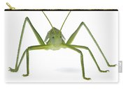 Katydid Silaka Nature Reserve South Carry-all Pouch