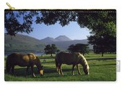 Killarney,co Kerry,irelandtwo Horses Carry-all Pouch
