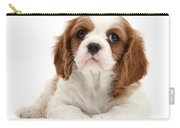 King Charles Spaniel Puppy Carry-all Pouch
