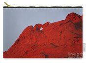 Kissing Camels On Fire Carry-all Pouch