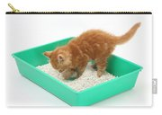 Kitten And Litter Tray Carry-all Pouch