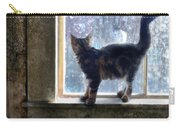 Kitten On Windowsill Of Abandoned House Carry-all Pouch