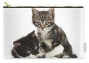 Kitten Pals Carry-all Pouch