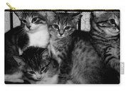 Kittens Corner Carry-all Pouch