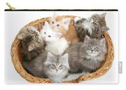 Kittens In Basket Carry-all Pouch