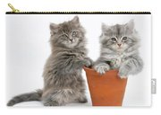 Kittens In Pot Carry-all Pouch