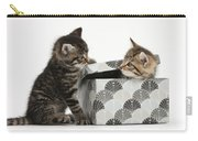 Kittens Playing With Box Carry-all Pouch