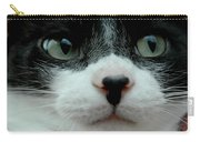 Kitty Closeup Carry-all Pouch