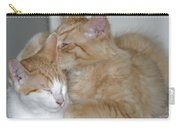 Kitty Kat Secrets Carry-all Pouch