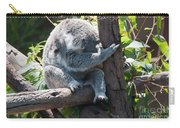 Koala Carry-all Pouch by Carol Ailles