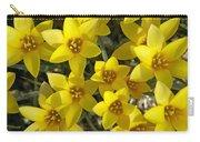 Kolpakowskis Tulip Tulipa Carry-all Pouch