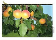 Lake Country Apricots Carry-all Pouch