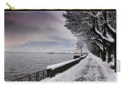 Lake Front In Winter Carry-all Pouch
