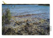 Lake Michigan 1 Carry-all Pouch