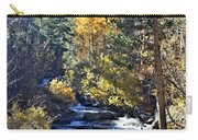 Lake Sabrina Creek Carry-all Pouch