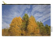 Lake Tahoe Aspen Sky Carry-all Pouch