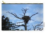 Lake Tahoe Eagle Nest Carry-all Pouch
