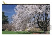 landscape 3 Sprawling Apple Tree in Spring Carry-all Pouch