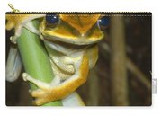 Large Arboreal Hylid Frog Carry-all Pouch