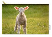 Larry Lamb And His Lovely Pink Ears. Carry-all Pouch