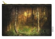 Last Rays Carry-all Pouch by Svetlana Sewell