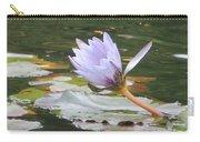 Lavendar Aqua Queen Carry-all Pouch