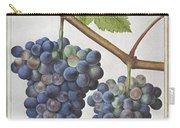 Le Moyne: Grape Vine, C1585 Carry-all Pouch