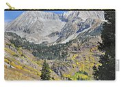 Lead King Basin Road 3 Carry-all Pouch