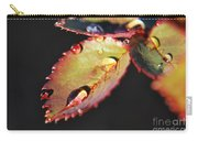 Leaf And Dew Drops Carry-all Pouch