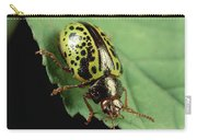 Leaf Beetle Calligrapha Sp Portrait Carry-all Pouch