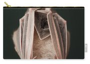 Leaf-nosed Bat Phyllostomidae, Amazon Carry-all Pouch