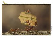 Leafcutter Ant Atta Sp Group Carrying Carry-all Pouch