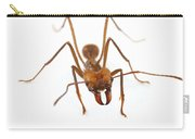 Leafcutter Ant Worker Costa Rica Carry-all Pouch