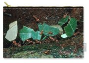 Leafcutter Ants Carry-all Pouch