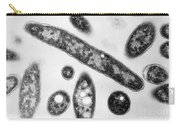 Legionella Sp. Bacteria, Tem Carry-all Pouch by Science Source
