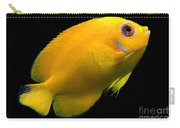Lemonpeel Angelfish Carry-all Pouch