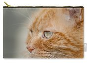 Leo The Kitty Beast Carry-all Pouch