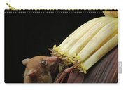 Lesser Long-tongued Fruit Bat Carry-all Pouch