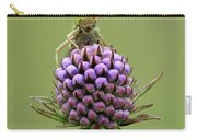 Lesser Marsh Grasshopper Chorthippus Carry-all Pouch
