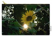 Let The Sun Shine Carry-all Pouch
