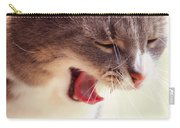 Lets Go Sleeping. Kitty Time Carry-all Pouch