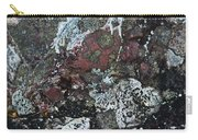 Lichen Abstract II Carry-all Pouch
