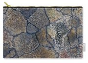 Lichen Pattern Series - 3 Carry-all Pouch