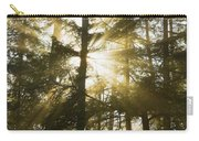 Light Beams Shining Through Trees And Fog Carry-all Pouch