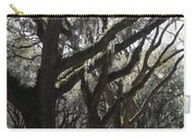 Light Through Live Oaks Carry-all Pouch